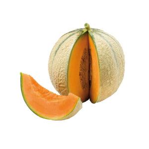 Melon – X1