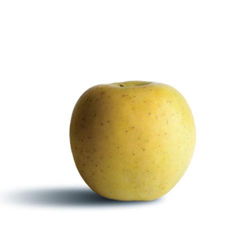 Pomme Goldrush – X3